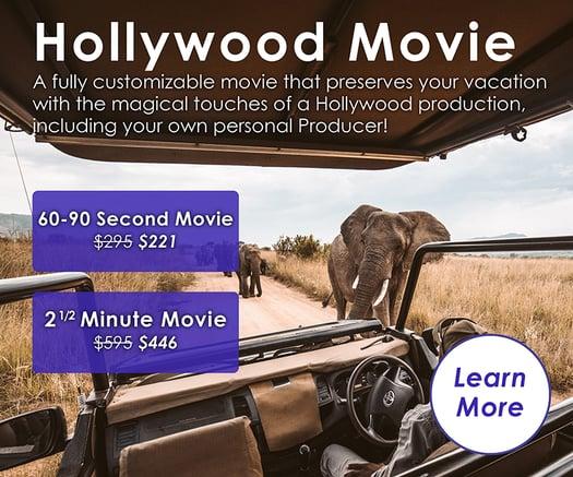 URLIFE Hollywood Movie