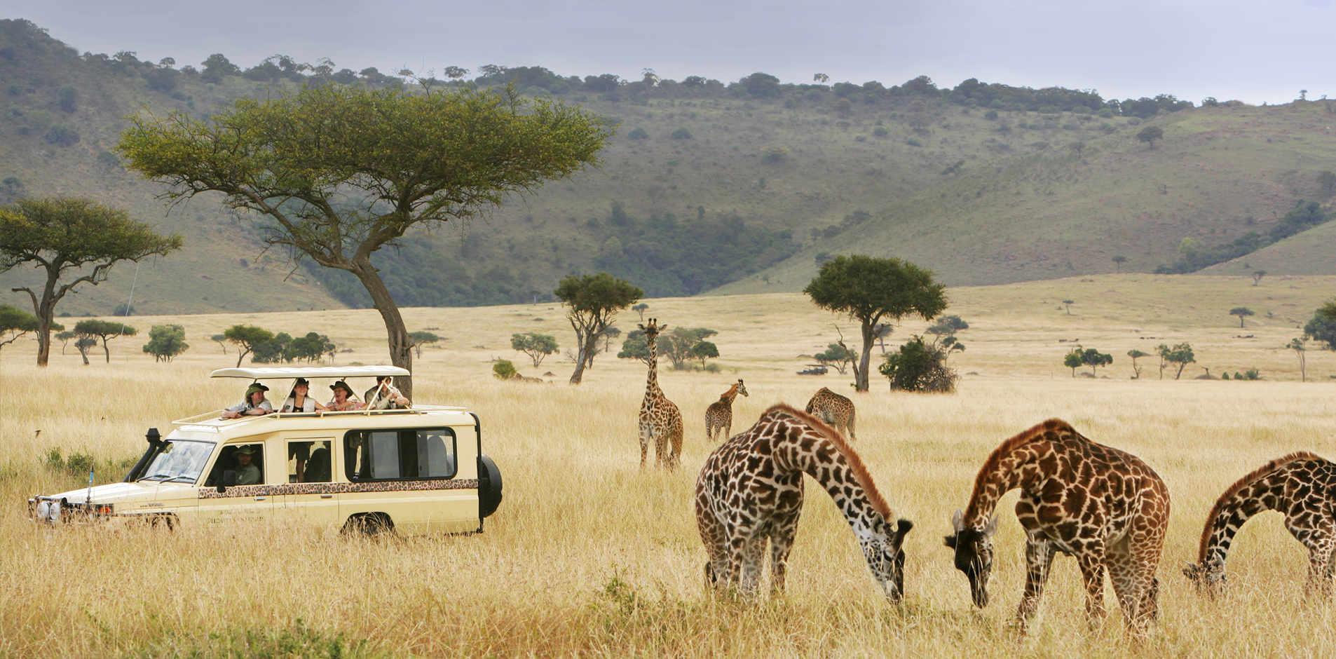 micato-safaris.jpg